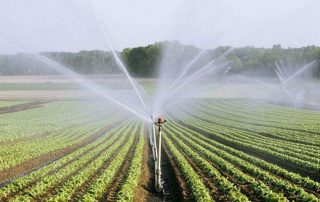 Agricultural Spray Hose